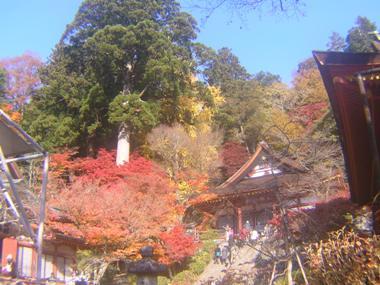2014_11_24_談山神社→松阪_087
