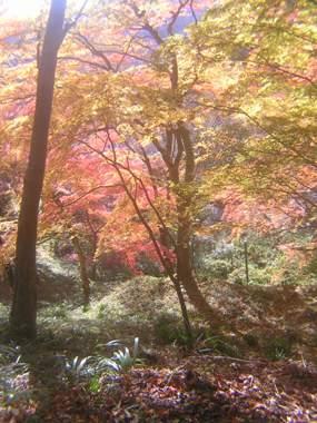 2014_11_24_談山神社→松阪_096