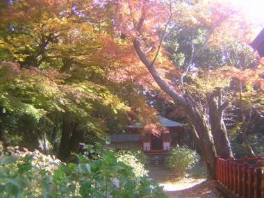 2014_11_24_談山神社→松阪_103