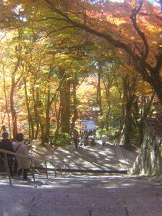 2014_11_24_談山神社→松阪_112