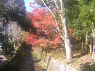 2014_11_24_談山神社→松阪_142