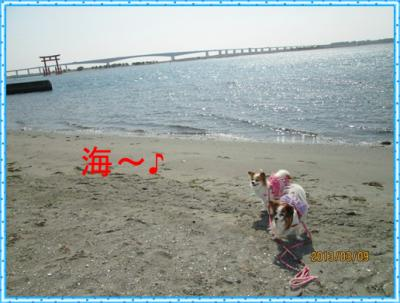 IMG_0158.jpg