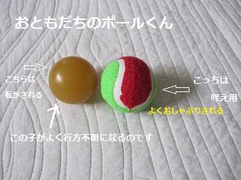 017-2_20120414151636.jpg