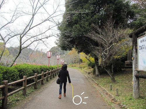 052-2_20121122204607.jpg