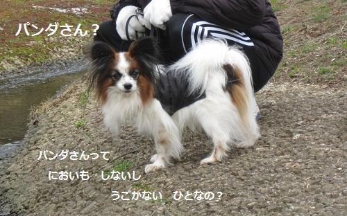 059-2_20120323214508.jpg