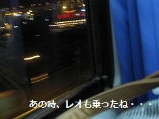 060-2_20121117193341.jpg