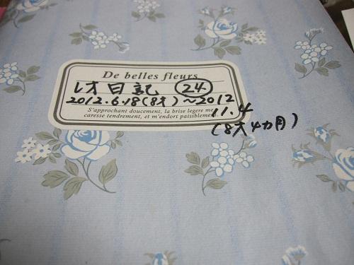099-2_20121111161305.jpg