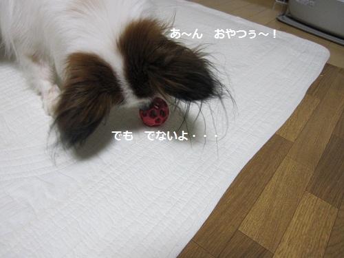 132-2_20120318111304.jpg