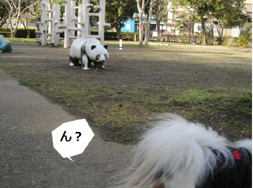 公園のパンダくん1