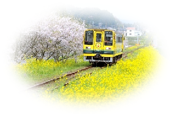 ムーミン列車~♪