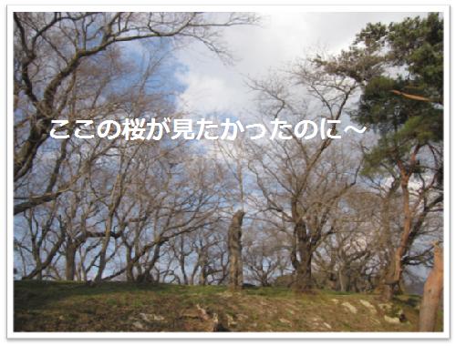 2012・春帰省6