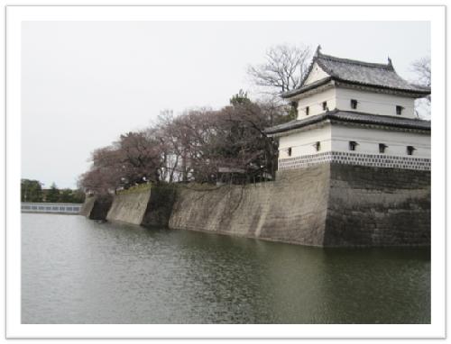 開花前の新発田城