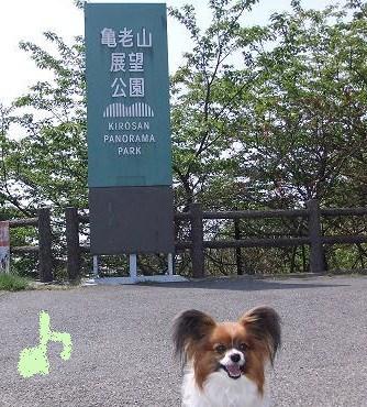 亀老山展望台公園についたよ