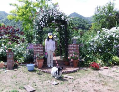 バラのお庭の入口
