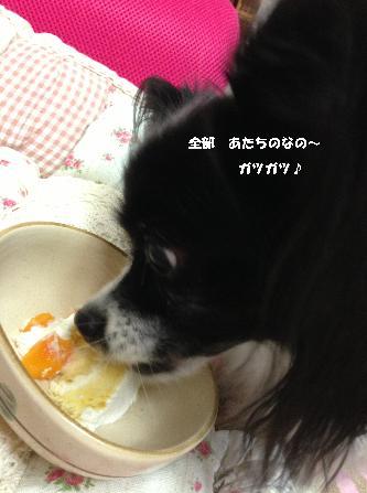 パピケーキ