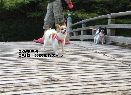okazaki1.jpg
