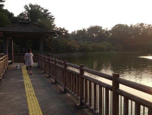 okazaki3.jpg