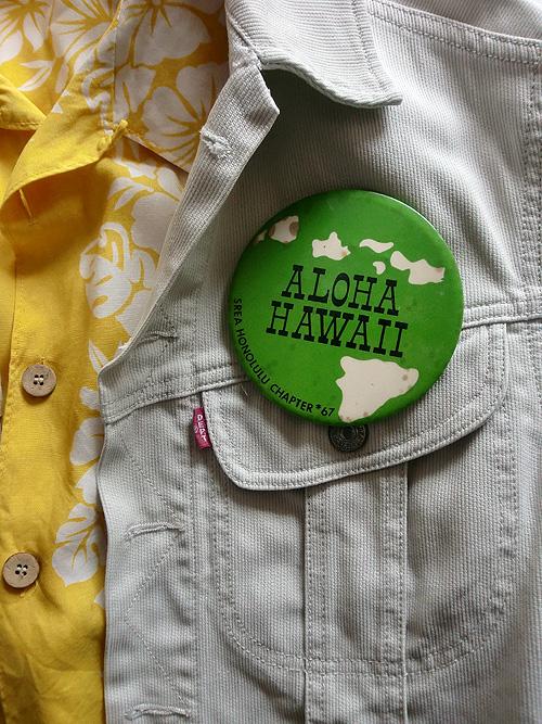 aloha hi canbagde