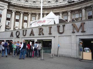 ロンドン水族館
