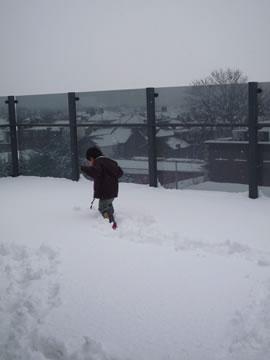 雪で遊ぶ息子