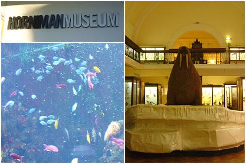 ホーニマン博物館