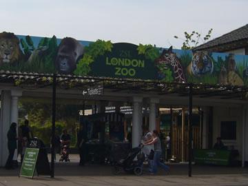 ロンドン動物園
