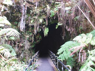 溶岩トンネルの入口