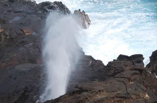 ハロナ潮吹き穴