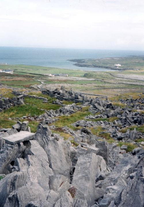 アイルランドの荒地