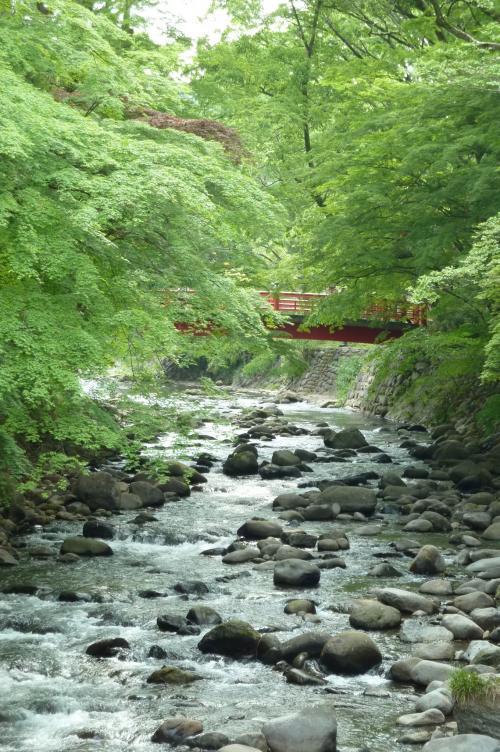 赤い橋と川