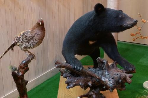 クマの剥製