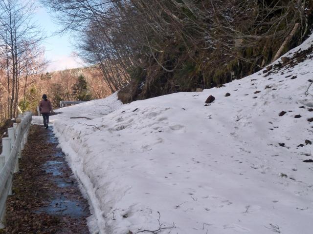 大河原峠へ続く道
