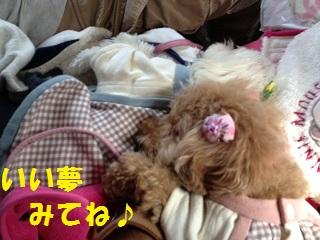 photoF.jpg