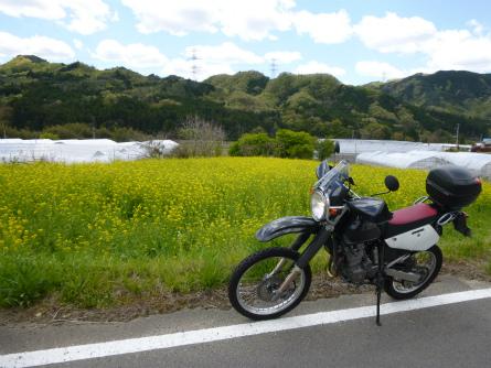 017福島の春