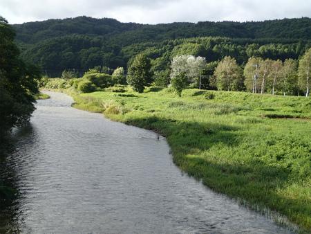 202天の川