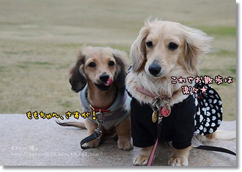 松任運動公園 006