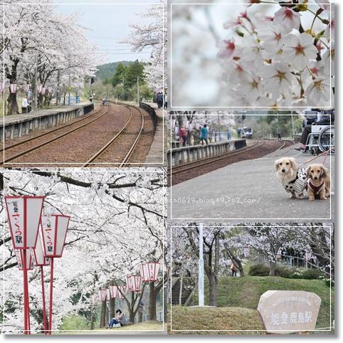 能登さくら駅2013 5-1