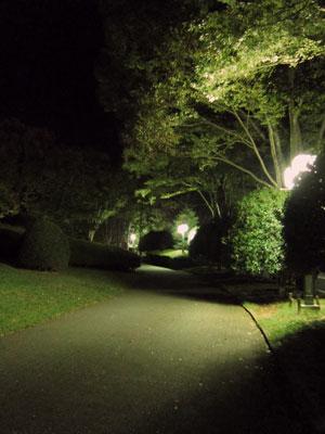 1310秋の夜