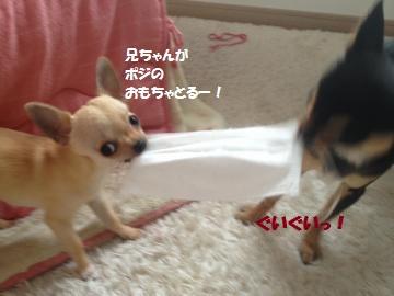 IMG_3816_convert_20130420152813.jpg