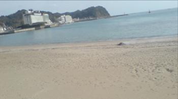 10 kamogawa1