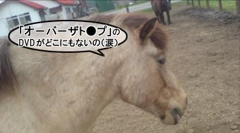 maboku10.jpg