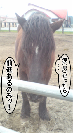 maboku11.jpg