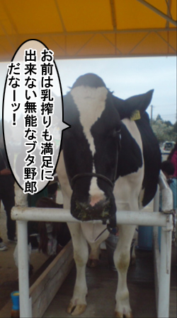 maboku12ushi.jpg