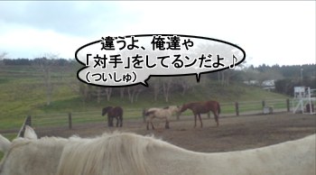 maboku9tsuisyu_20120503202356.jpg