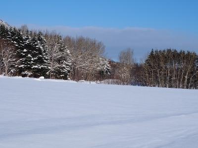 冬晴れ (1) (400x300)