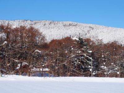 冬晴れ (2) (400x300)