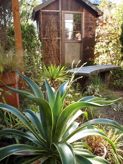 my-garden 008