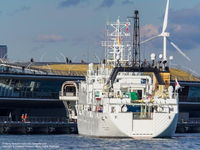 白い船 by 横浜港