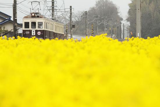 2012/3/18 高松琴平電鉄琴平線 栗熊~岡田