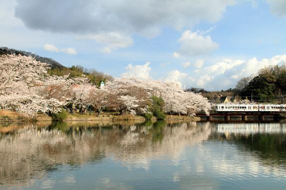 2012/4/7 和歌山電鐵貴志川線 大池遊園